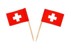 schweizerfaehnchen 1