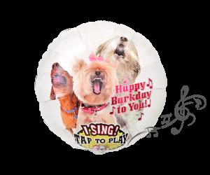 singender ballon hunde 1
