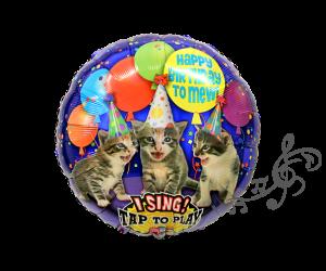 singender ballon katzen 1